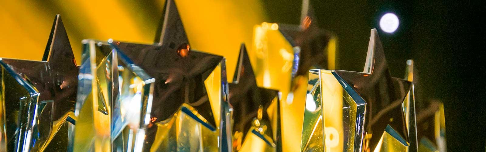 APPC15 Awards (img_2807)_web_awards_page banner.jpg
