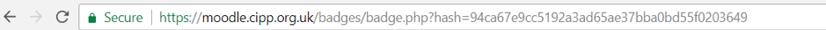 digital badges helpsheet - URL code example.png