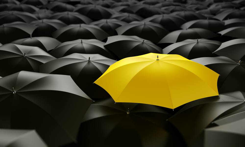 Yellow umbrella with grey umbrella_12940873_web.jpg
